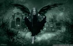 Widescreen Res: 1440x900   1680x1050   1920x1200. Size: 154 KB   209 KB   225 KB   175 KB   213 KB   253 KB. Dark Night Girl Gothic gothic wallpapers