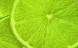 Green Lime Wallpaper