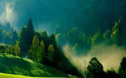 Free Mist Wallpaper