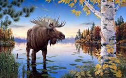 beautiful painting of moose animal free download high resolution wallpapers f moose