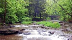 Mountain Stream Wallpaper