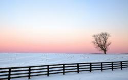 Free Snow Fence Wallpaper