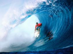 Free Surfing Wallpaper 12882