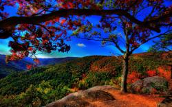 autumn-free-wallpaper-autumn-landscape ?