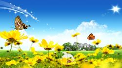 Beautiful Nature Wallpapers for Desktop Free Download Pictures