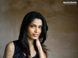 Freida Pinto Windows 8.1 Theme and Wallpapers