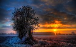 Frosty sunset