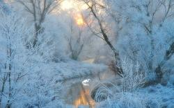 Cold Frosty Dawn wallpaper