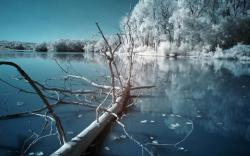 Frozen Lake Pictures