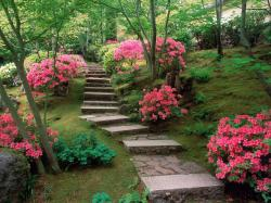garden-wallpaper-16-photos- (5)