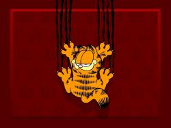 Garfield Garfield wallpapers