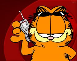 Garfield garfield wallpaper