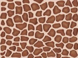 photo giraffe-skin-pattern-texture.jpg