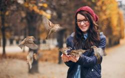 Girl Birds Sparrows Photo HD Wallpaper