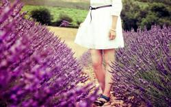 Mood Macro Flowers Lavender Purple Field Girl Legs Dress