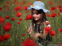 Girl Poppy Flower Field Wallpaper