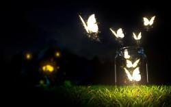 Glowing butterflies art