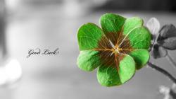 Good Luck HD Wallpaper