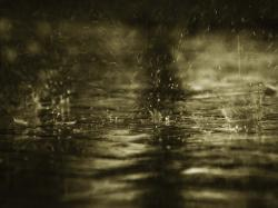 Related For Gorgeous After Rain Wallpaper. Rain Wallpaper