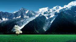 Gorgeous mountain meadow HQ WALLPAPER - (#122764)