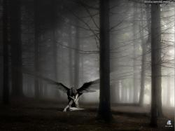 Fascinating Gothic Forest Wallpaper