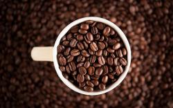 Grains Coffee Cup White