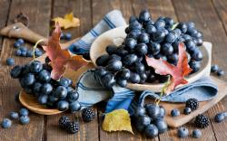 Grapes Berries Blueberries Leaves Autumn