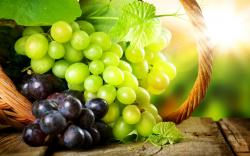 Grapes Wallpaper 20458 2560x1600 px