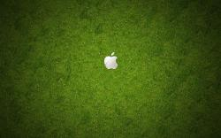 Grass Apple Logo Background