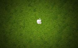 Grass Apple Logo Background