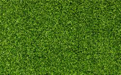 Download wallpaper: background Grass green, texture, desktop wallpapers, photo for design
