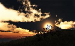 Hill grass sunset