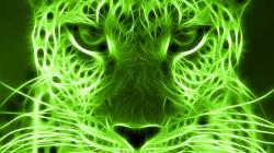 ... Image Green #06 Image