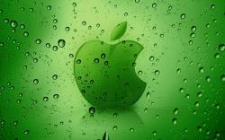 Rainy Green Apple Wallpaper