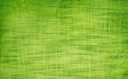 Green cloth texture