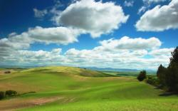 DOWNLOAD: green-hills free picture 2560 x 1600