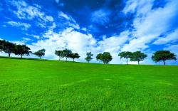 Sydney Australia Green Landscape photos, wallpapers