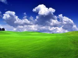 Green Landscape Free Background Pictures