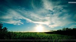 "You are viewing wallpaper titled ""Grassy Green Scenery With Sunset ..."