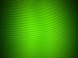 ... Green Wallpaper 6 ...