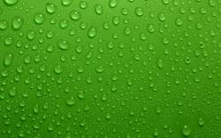 ... Green Wallpaper ...