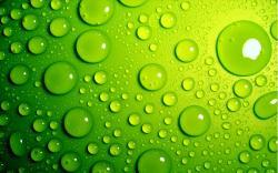 ... Green Wallpaper 11 ...