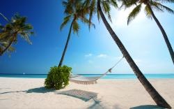 Hammock beach palms paradise
