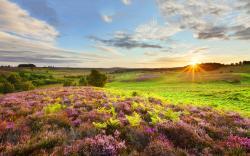 Hampshire england landscape