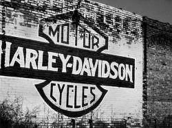 Harley Davidson Logo 28 HD Image