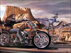 Harley Davidson Wallpaper1