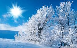 Winter Snow Wallpaper HD 2