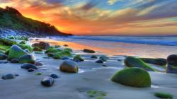 """Download the following Wonderful HDR Beach Wallpaper 967 by clicking the button positioned underneath the """"Download Wallpaper"""" section."""