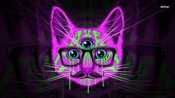 Psychedelic hipster cat wallpaper 1280x800 · Psychedelic hipster cat wallpaper 1366x768 ...