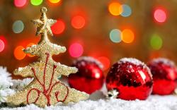Gorgeous Holiday Decoration Wallpaper 41222 1920x1200 px